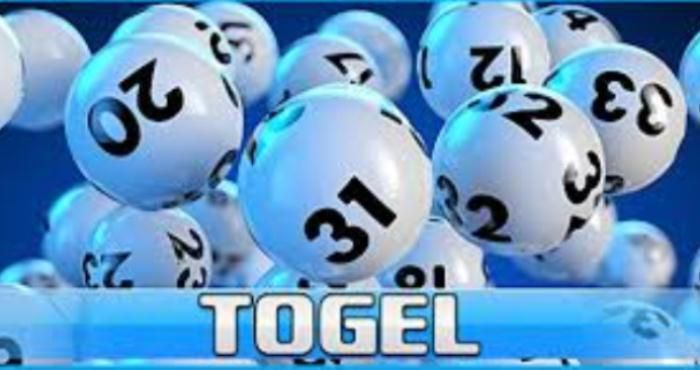 Totobet - Bandar Togel Online yang Aman dan Terpercaya